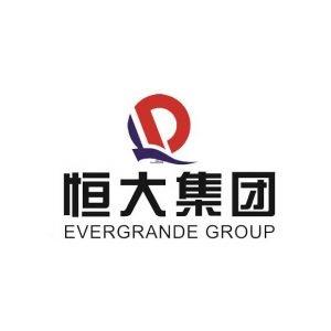 EVERGRANDE NEW ENERGY AUTOMOTIVE GROUP logo