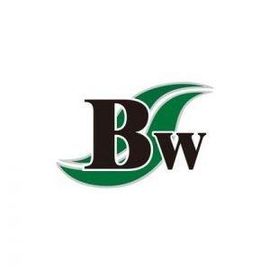 bruckwell technology logo